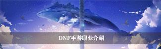 《DNF手游》职业介绍